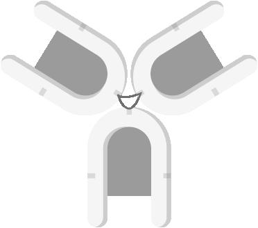 sport-star-formation